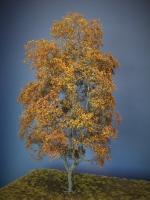 Diorama Zubehör Modell Bäume, 1 Buche mit Herbstlaub, ca. 35 cm,