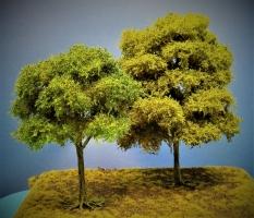 Diorama Modell Bäume Typ 2, 2 Buchen mit Sommerlaub, ca. 30 - 38 cm