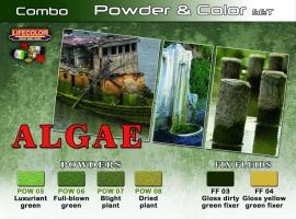 Pigment & Color Set, Algae