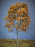 Diorama Zubehör Modell Bäume, 1 Buche mit Herbst-Laub, ca. 25 cm,