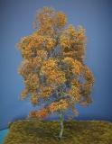 Diorama Zubehör Modell Bäume, 1 Buche mit Herbstlaub, ca. 45 cm,