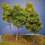 Diorama Modell Bäume Typ 2, 4 Bäume mit Sommerlaub, ca. 30 cm