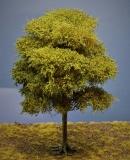 Diorama Modell Bäume Typ 2, 1 Buche mit Sommerlaub, ca. 20 - 25 cm