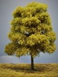 Diorama Modell Bäume Typ 2, 1 Buche mit Sommerlaub, ca. 25 - 30 cm