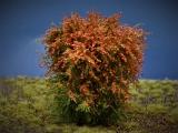 Diorama Zubehör, 1 Modellbaum- Busch mit roten Blüten, 12 - 15 cm hoch