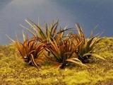 Diorama Zubehör, 1 Pflanzen Set 1, ca. 3,5 cm hoch