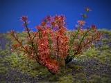 Diorama Zubehör, 1 Pflanzen Set 11, ca. 10 cm hoch