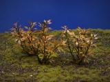 Diorama Zubehör, 1 Pflanzen Set 15, ca. 5 cm hoch