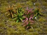 Diorama Zubehör, 1 Pflanzen Set 18, ca. 3 cm hoch