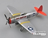 P-47D RAT HUNTER in 1:48