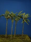 Diorama Zubehör, 1 colorierte Palme, ca. 250 mm